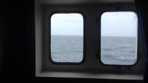 Cabine avec vue sur les albatros[1]