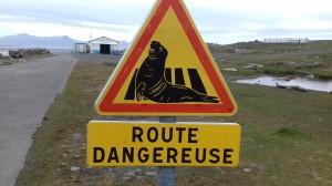 Route dangereuse